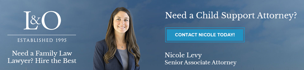 Contact Child Support Lawyer Levy